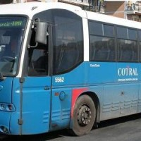 15-bus-cotral