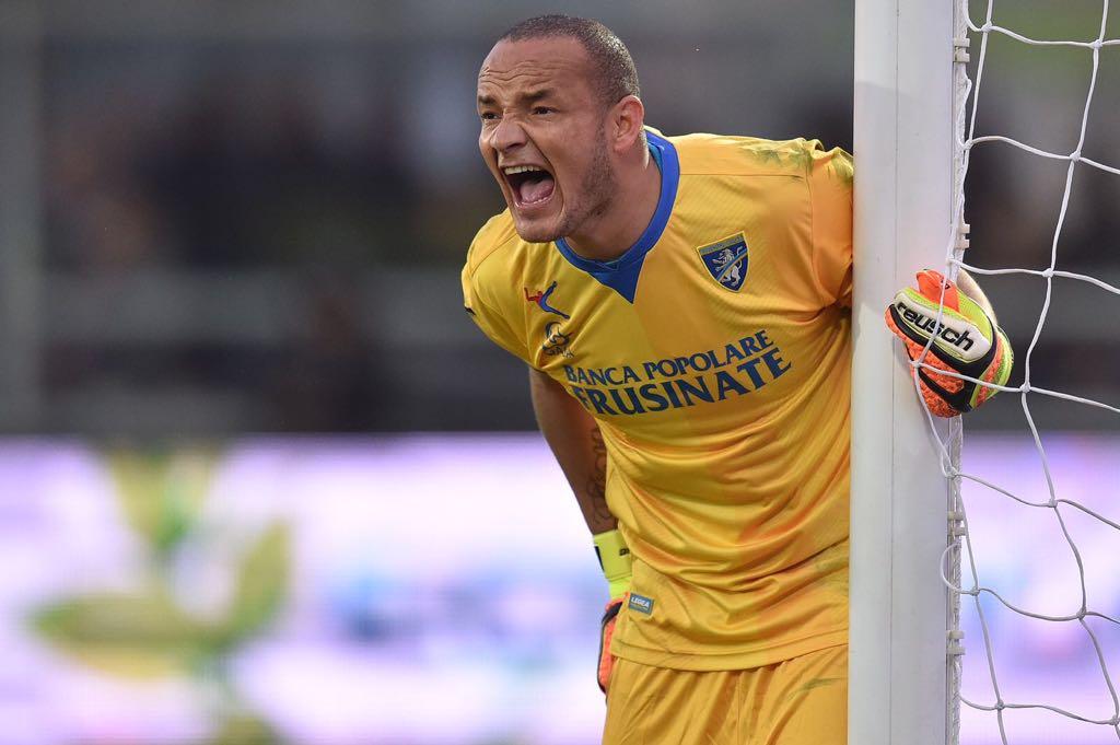 Calcio - Frosinone, rinnovo di un altro anno per Zappino ...